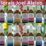 Florais do Joel Aleixo: Gosto Demais!