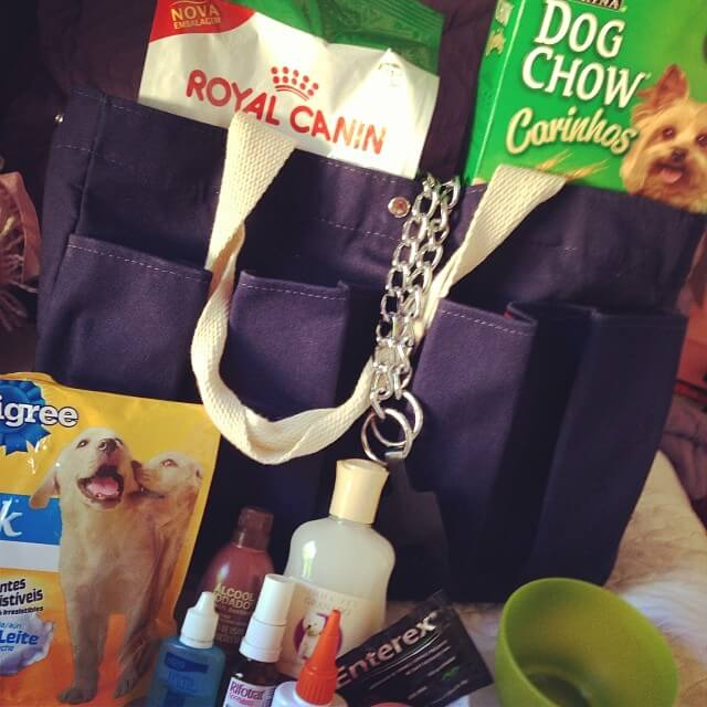 viajar cão