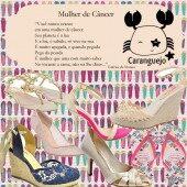 Os Sapatos da Mulher de Câncer