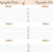 Organizador Diário, Semanal e Mensal Pra Imprimir!