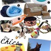 11 Coisas Legais Pro Seu Pet!