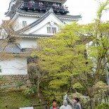 Coisas do Japão: Festival Hanami no Castelo de Okazaki!