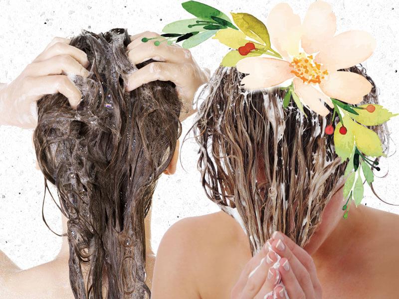 raiz oleosa e pontas secas como tratar juro valendo