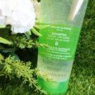 Shampoo Cabelos Oleosos Vizcaya Botanique