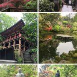 Templo Natadera: Conhecendo o Japão Com a Si!
