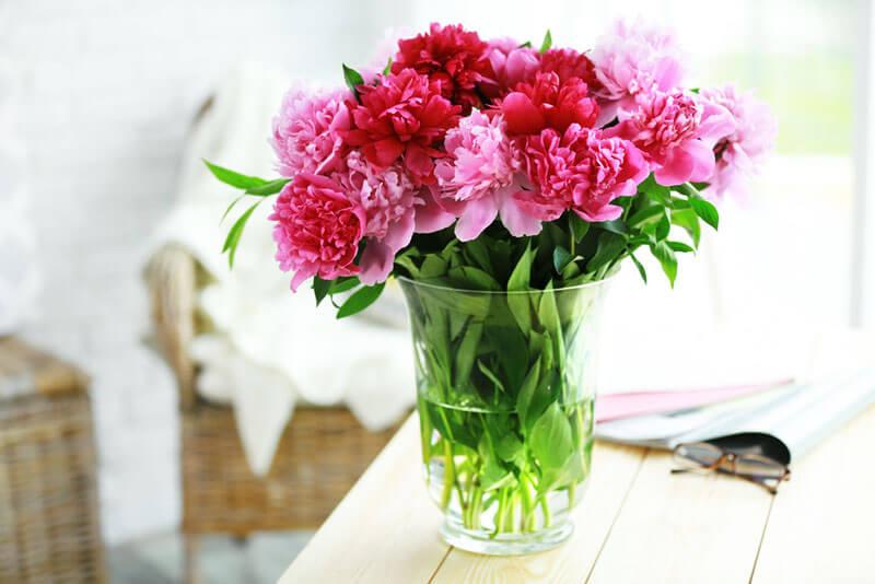 flores durarem mais no vaso juro valendo