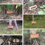Natureza Gera Beleza: No Pará com a Natura!