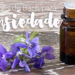 Florais de Bach Para Ansiedade: Os Que Funcionam Pra Mim!