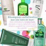Shampoo Esfoliante: 5 Opções Maravilhosas Para Seu Cabelo!