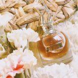 Perfume Scandal Jean Paul Gaultier: #Perfumando