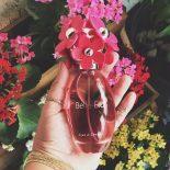 Perfume Bella Flor Água de Cheiro: #Perfumando