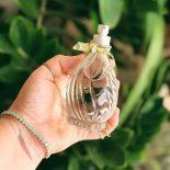 Perfume Flor de Graviola L´Occitane Au Brésil