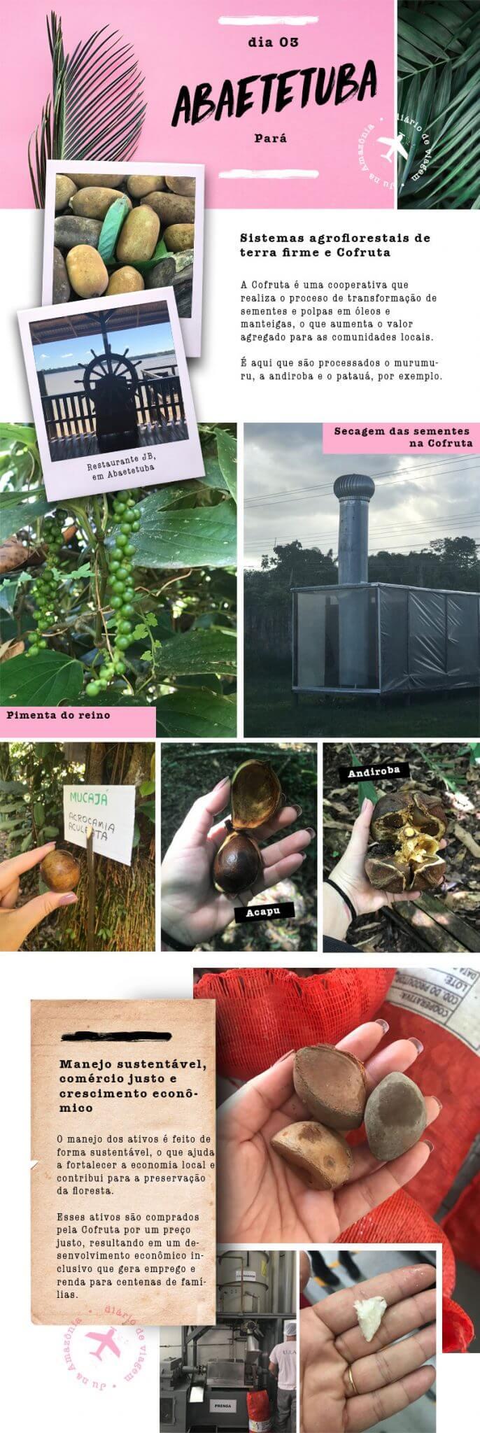 amazônia-com-natura-ekos-1