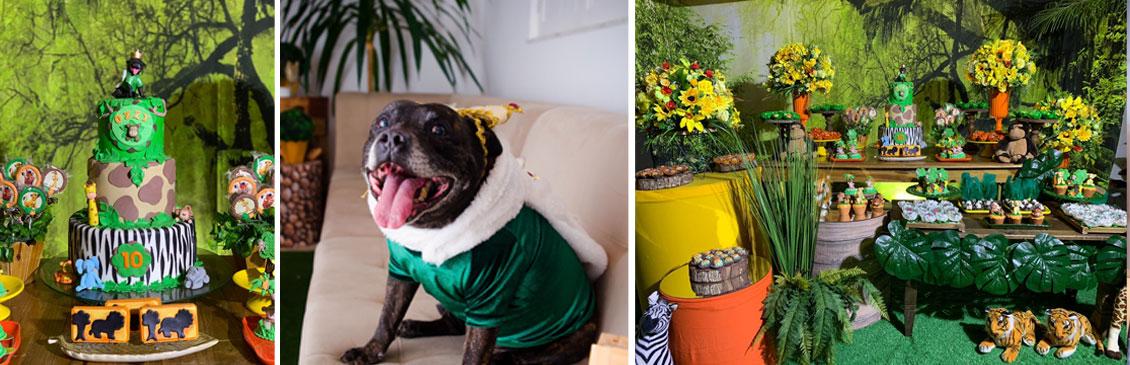 Aniversário de Cachorro: os 10 Anos de Ozzynho