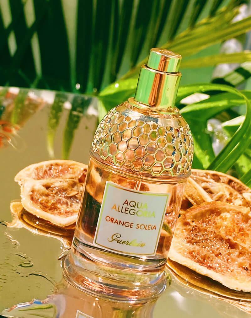 perfume orange soleia guerlain aqua allegoria